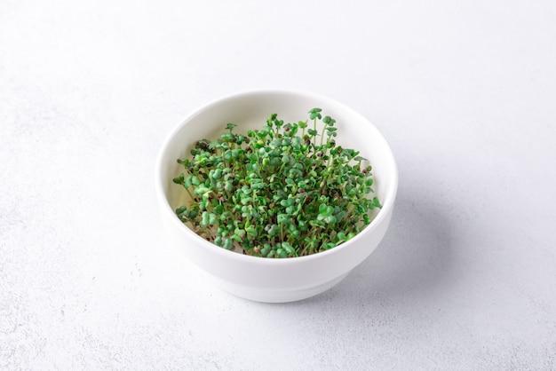 A mostarda de microgreen brota na bacia. micro verduras crescendo. conceito de alimentação saudável. fechar-se
