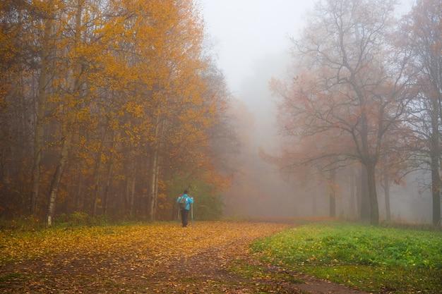 A mulher adulta está em um beco enevoado no parque outono.