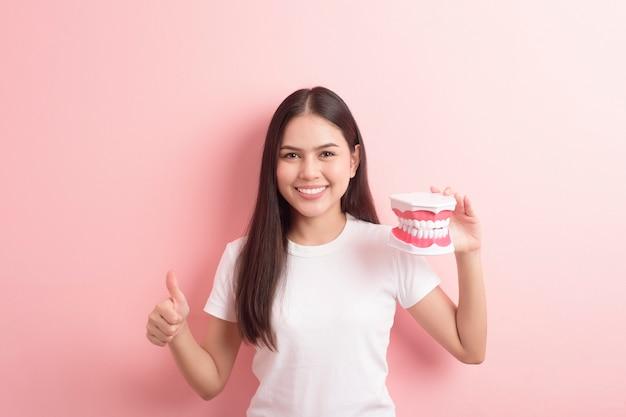 A mulher bonita está segurando os dentes modelo artificial para demonstração dental limpo