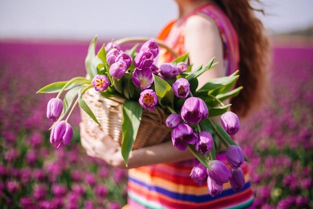 A mulher que desgasta prender uma cesta com o ramalhete de tulipas floresce em campos da tulipa.