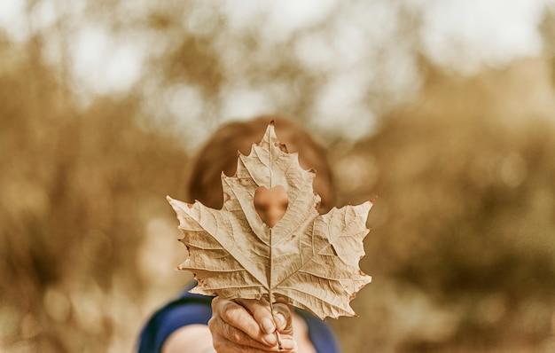 A mulher sênior com blusa azul e folha de bordo em forma de coração. conceito de outono