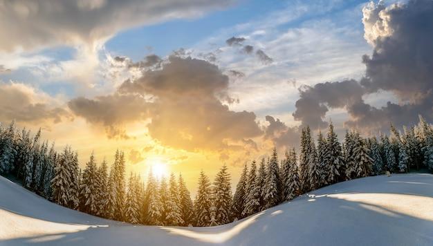 A neve cobriu a paisagem de pinheiros nas montanhas de inverno na vibrante noite do pôr do sol.