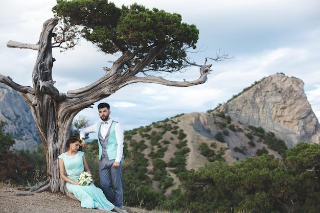 A noiva e o noivo na natureza nas montanhas perto da água