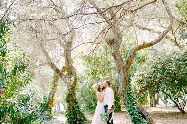 A noiva e o noivo se abraçam entre as árvores pitorescas cobertas de hera no parque, o noivo