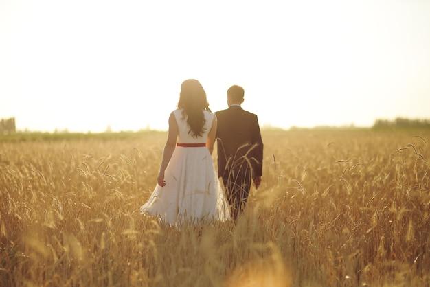 A noiva e o noivo se dão as mãos e caminham no campo de trigo sob os raios do pôr do sol
