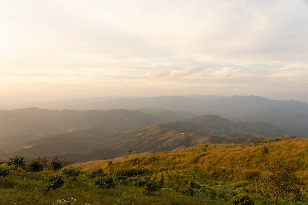 A paisagem de negligencia o campo da montanha no tempo do por do sol sobre o ponto de vista em tailândia.