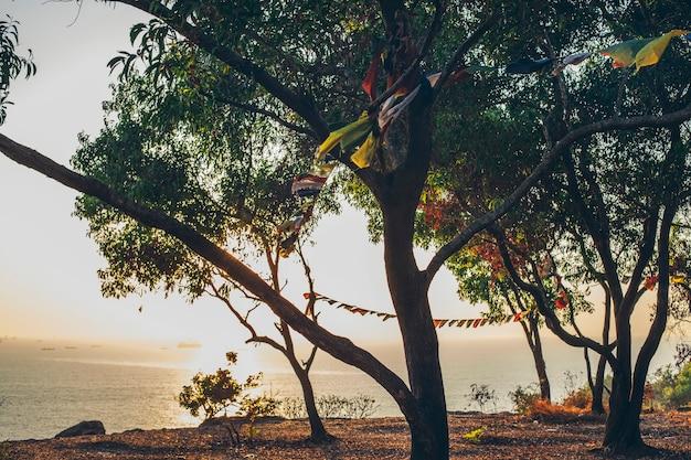 A paisagem é aberta com vista para o mar e as árvores, com bandeiras festivas tremulando ao vento