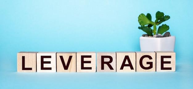 A palavra alavancagem é escrita em cubos de madeira perto de uma flor em um vaso em uma superfície azul clara