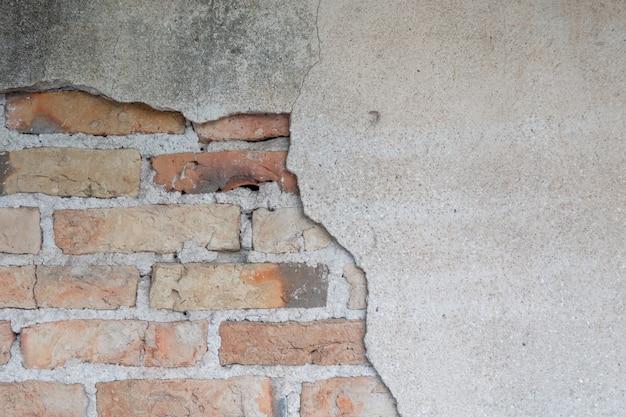 A parede é feita de tijolos e depois pintada de branco. há trepadeiras na parede esquerda.