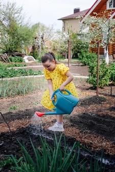 A pequena jardineira ajuda os pais a plantar sementes no jardim e rega os canteiros com um regador ...
