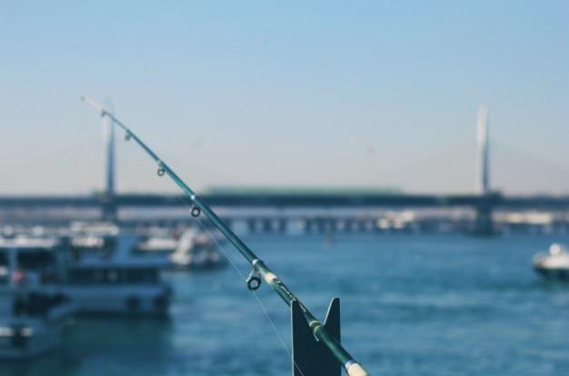 A pesca na baía