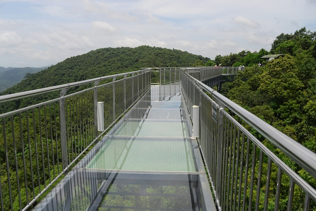 A ponte de vidro no parque florestal de yanoda na ilha de hainan na cidade de sanya na china