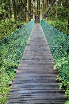 A ponte verde na floresta alishan em taiwan