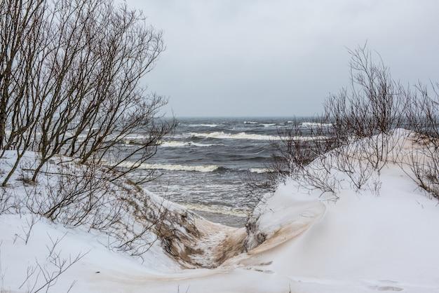 A praia do mar báltico tem neve no inverno e há grandes ondas no mar. trilha entre as dunas de inverno do mar báltico em saulkrasti, na letônia