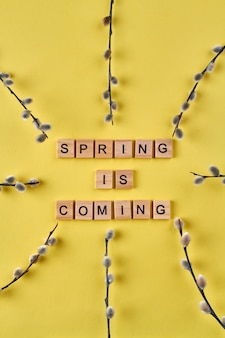 A primavera está chegando, composição. cubos de madeira de tiro vertical e ramos de salgueiro em fundo amarelo.