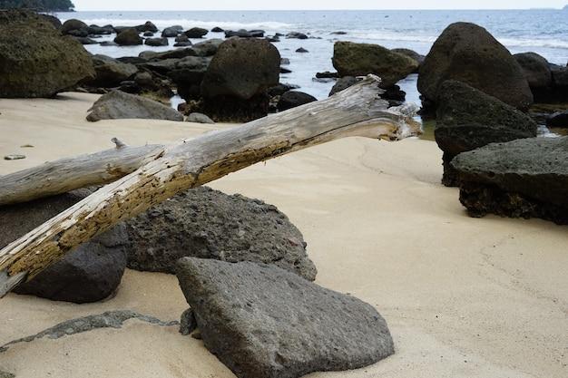 A rocha e a madeira da praia usadas como pano de fundo