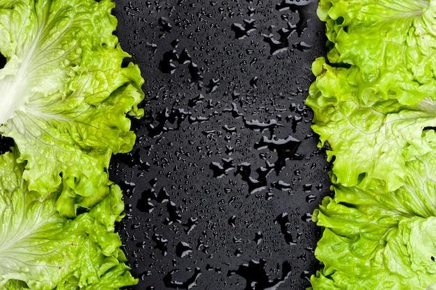 A salada orgânica verde da alface deixa o quadro no fundo preto molhado.