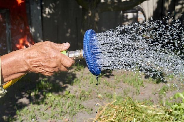 A senhora idosa pulverizando plantas ao ar livre