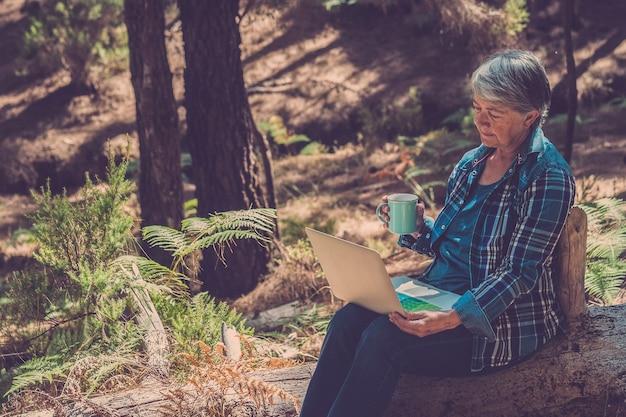 A senhora madura usa o computador laptop sentada na floresta e bebendo chá saudável, tendo um tempo de relaxamento - pessoas idosas ativas em atividades de lazer ao ar livre no parque florestal - turista usando conexão sem fio