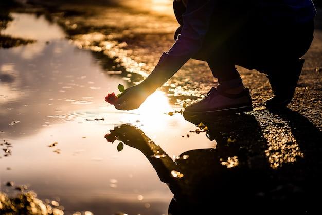 A silhueta do homem ao pôr do sol está colocando uma rosa vermelha na água