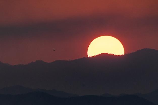 A silhueta e a montanha do voo do pássaro ajardinam no por do sol.