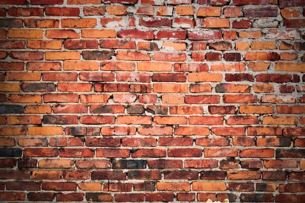 A textura da parede.