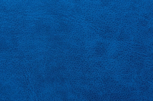 A textura da pele azul