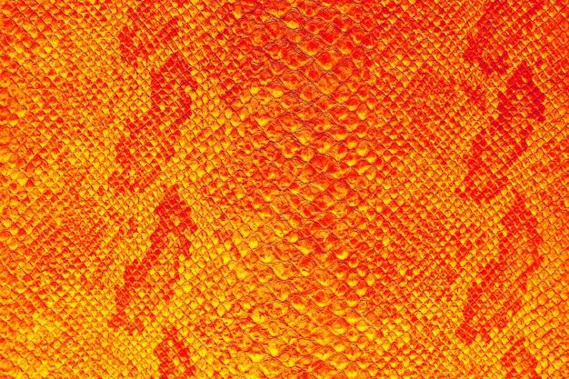 A textura da pele de cobra em tons de cor