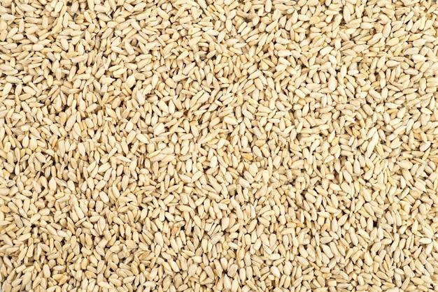 A textura das sementes de girassol descascadas como superfície