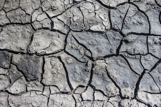 A textura do solo e sujeira seca para o fundo. a terra está seca.