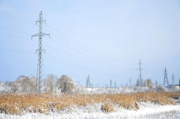 A torre da linha de energia está localizada em uma área pantanosa