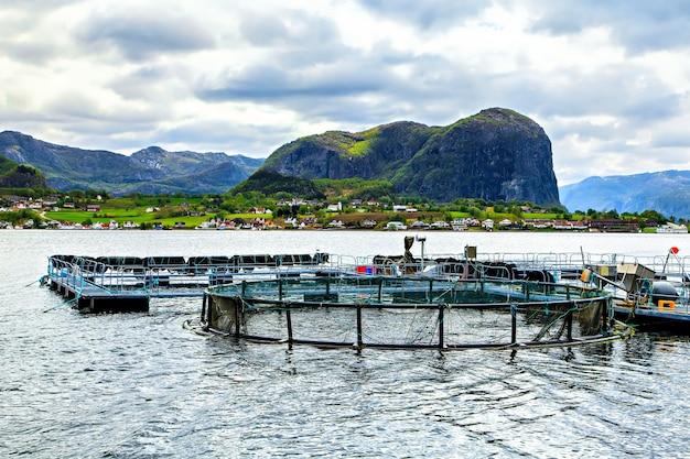 A tradicional fazenda de peixes no mar do norte