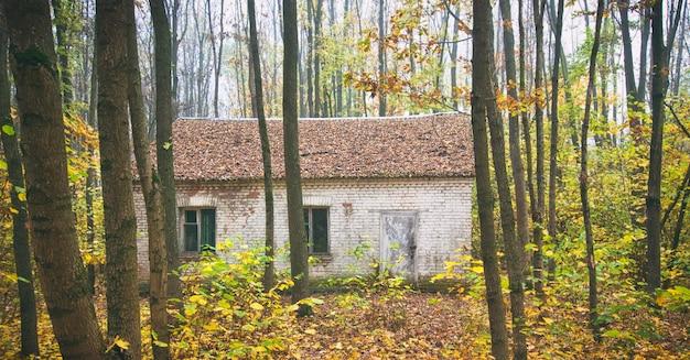 A única casa de tijolos abandonada na floresta de outono