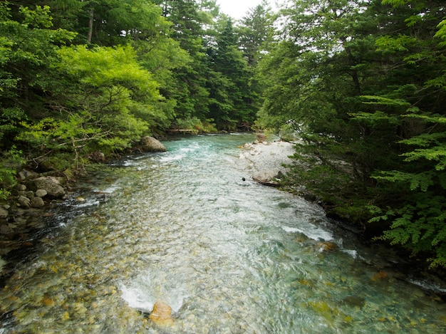 A vista do riacho flui pela floresta na montanha no japão kamikochi