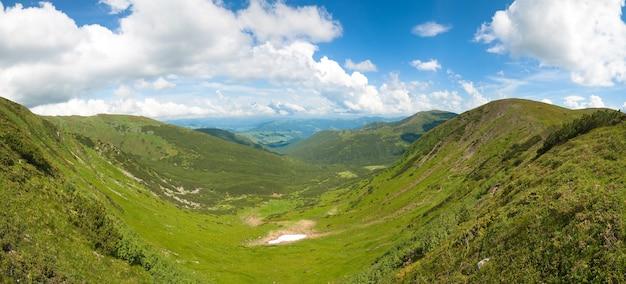 A vista panorâmica do prado da montanha do verão com a floresta de zimbro e a neve permanece no cume à distância. imagem de costura de cinco tiros.