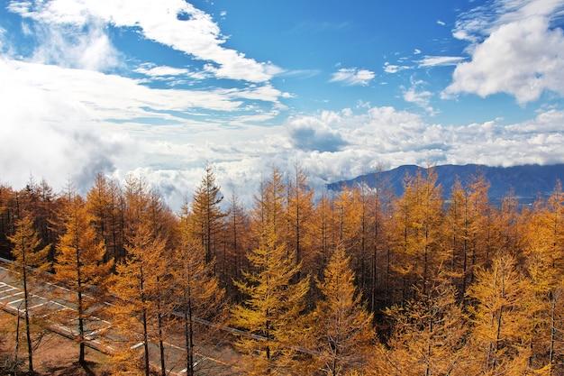 A vista sobre o parque nacional fuji no outono, japão