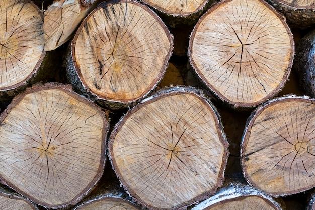 A vista superior do vintage marrom macio circular velho grande cotoes de árvore de madeira estalou na seção para o fundo, uso da textura do projeto do paperwall. Foto Premium