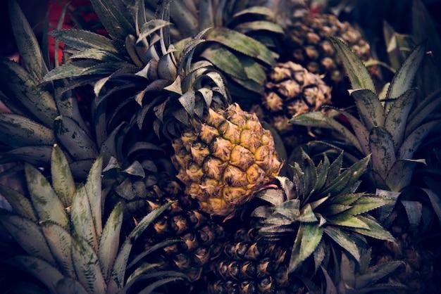 Abacaxi ananás citrinos suculenta nutrição pina
