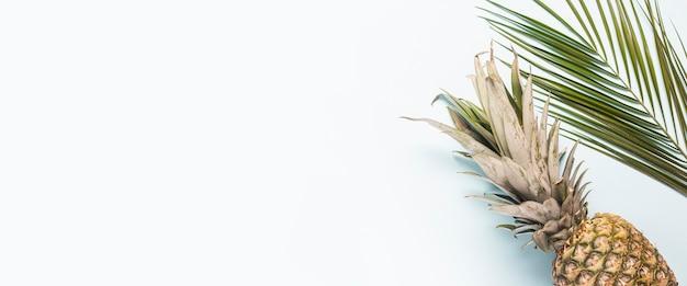 Abacaxi maduro inteiro e uma folha de uma palmeira sobre um fundo claro.