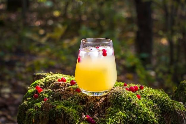Abacaxi, manga, limão bebida decorado com bagas vermelhas em vidro outdors em madeira com musgo.