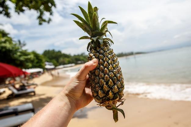 Abacaxi na mão do homem na praia de verão.
