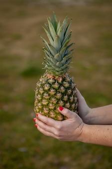 Abacaxi saboroso segurando com as mãos com unhas vermelhas