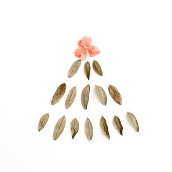 Abeto feito de folhas secas e botão de flor vermelha