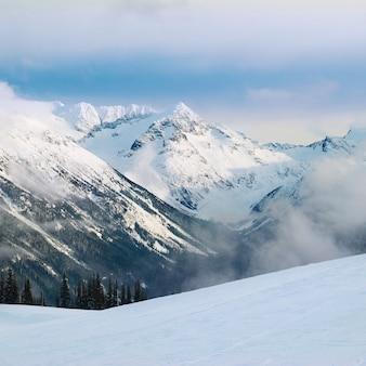 Abetos de inverno nas montanhas cobertas de neve fresca