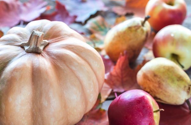 Abóbora com maçãs na mesa de madeira