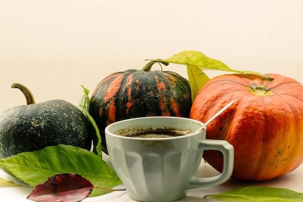 Abóbora de composição de outono e folhagem de outono em uma superfície branca