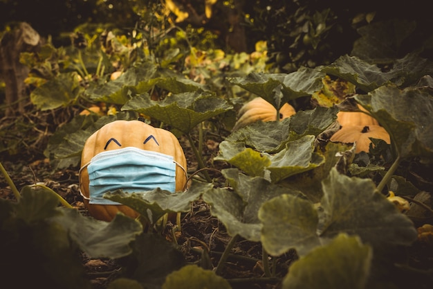 Abóbora de halloween 2020 feliz porque pode sair com uma máscara devido ao covid 19