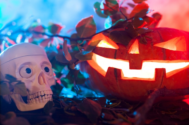 Abóbora de halloween em uma floresta mística à noite.