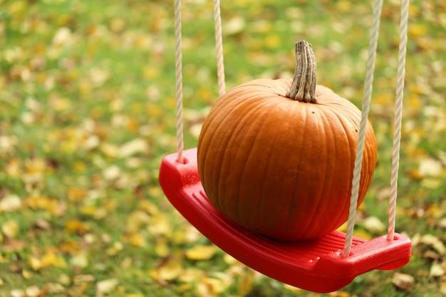 Abóbora de outono. abóbora em um balanço no jardim. dia de ação de graças. dia das bruxas.