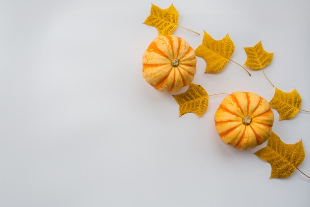 Abóbora de outono e folhas de outono
